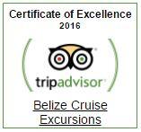 Belize tripadvisor cert