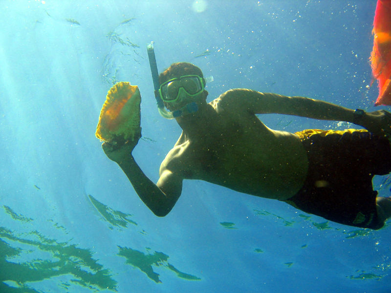 Goff's Caye Snorkeling
