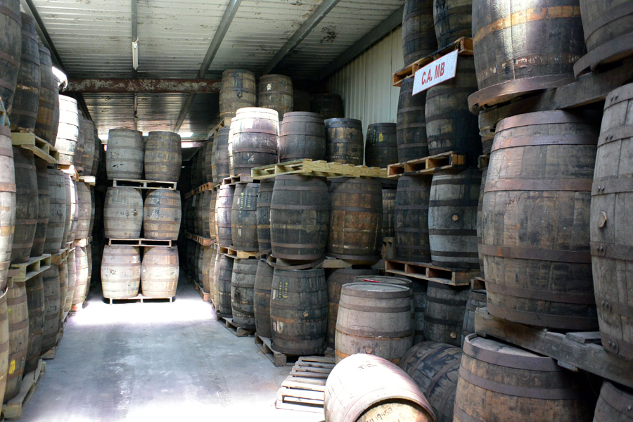 Belize Barrels of rum at the belize rum factory