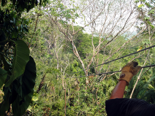Belize Jungle Canopy tour cable