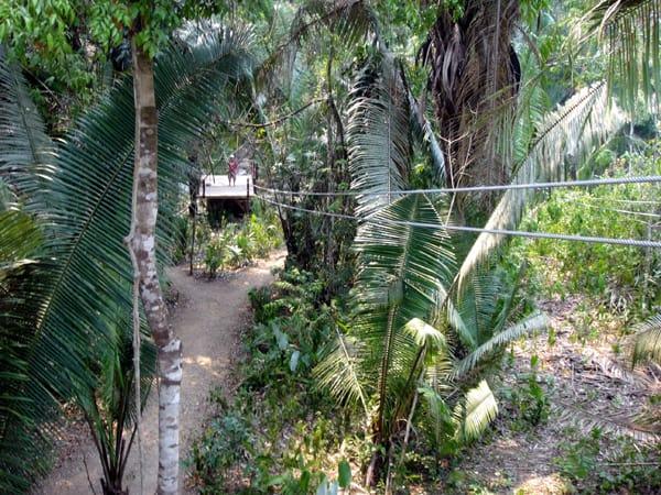 Belize zip line platform